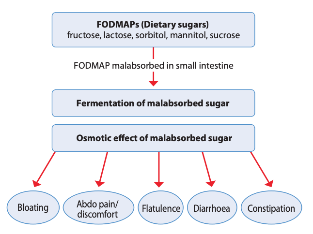 FODMAPs FAQ and FODMAP foods intolerance symptoms diagram